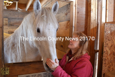 Pam Simmons stands with Wellington, a Percheron and one of the horses Simmons' new program, Divine Equine, will use to help participants reflect on themselves. (D. Lobkowicz photo)