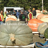 Onlookers inspect the giant pumpkins and squash at the Damariscotta Pumpkinfest and Regatta Great Pumpkin Commonwealth Weigh-Off at Pinkham's Plantation Sunday, Oct. 4. (Maia Zewert photo)