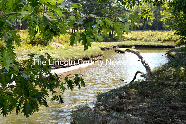 Wildcat Creek on the Zak Preserve in Boothbay Monday, Sept. 7. The tax acquired Lallis property on McKay Road in Edgecomb will connect the Schmid Preserve in Edgecomb to the Zak Preserve completing the River-Link Trail between the Damariscotta and Sheepscot rivers. (Abigail Adams photo)