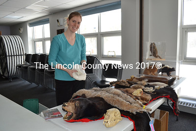 Chewonki Program Assistant for Chewonki's Traveling Natural History program, Emma Balazs, prepares for her presentation Saturday, Feb. 6, during the Wiscasset Community Center's Winterfest activities.(Charlotte Boynton Photo)
