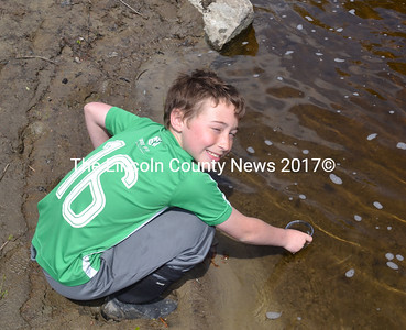 Ashton Cunningham releases a young Atlantic salmon into the Sheepscot River on May 17. (Abigail Adams photo)