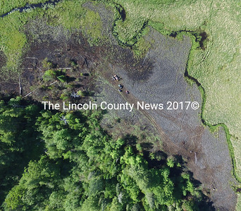 "An aerial view of 2.9 acres of wetland that burned in what investigators are calling an ""arson-caused"" fire off Carl Bailey Road in Bristol on June 15."