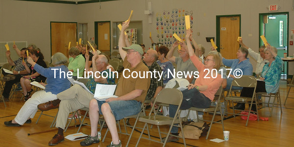 Somerville voters raise their cards during their annual town meeting Saturday, June 18. (Alexander Violo photo)