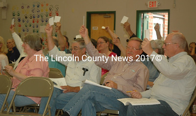 Somerville residents cast their votes during annual town meeting Saturday, June 17. (Alexander Violo photo)