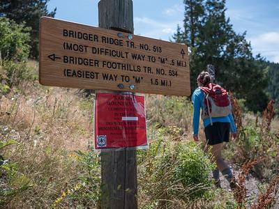 ASC Staff Baldy Hike 2015