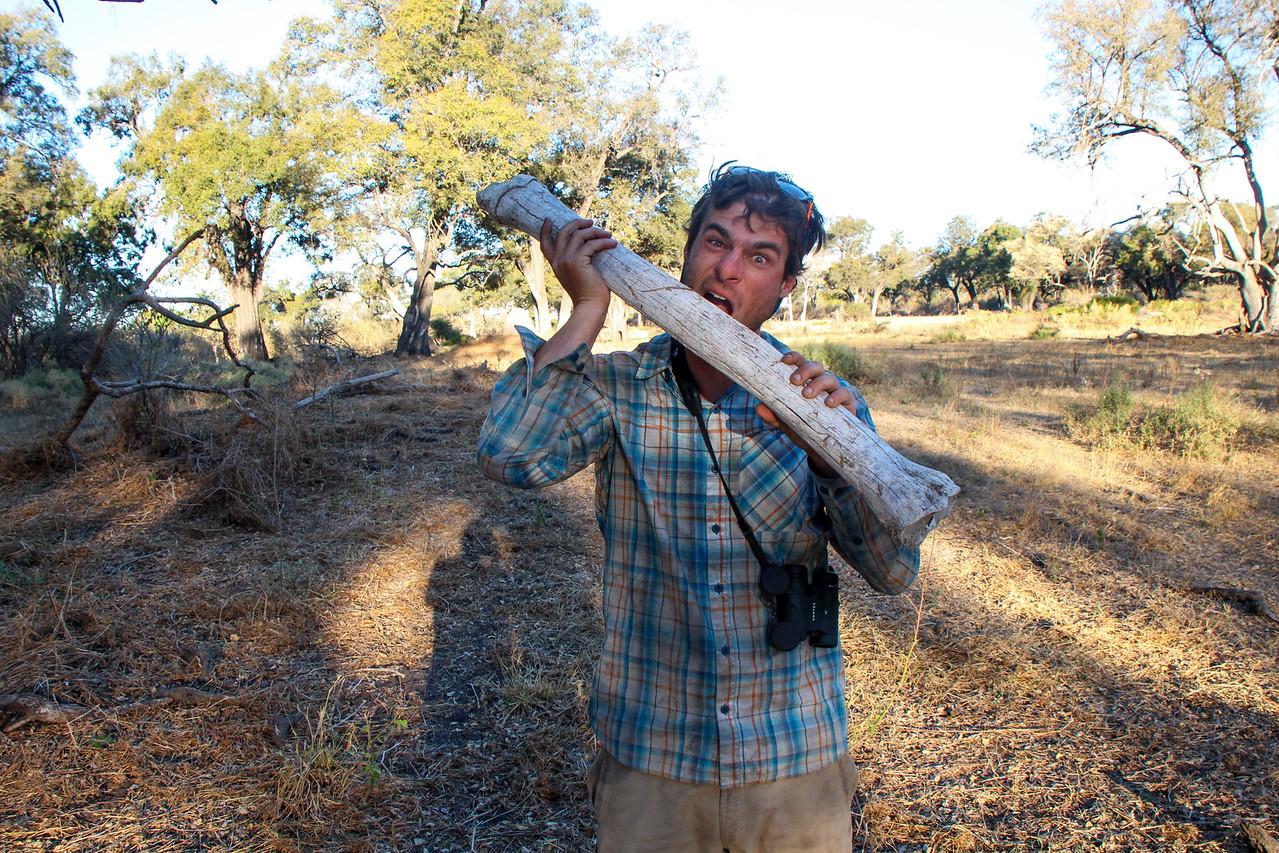 Gregg eats giraffe femur, Botswana. By Shah Selbe