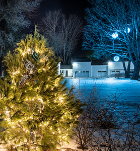 A Waldoboro white pine stands in front of the Blaine House in Augusta on Tuesday, Dec. 15. The 9-foot-tall tree was grown at Echo Hill Choose and Cut on Winslows Mills Road in Waldoboro. (Bisi Cameron Yee photo)