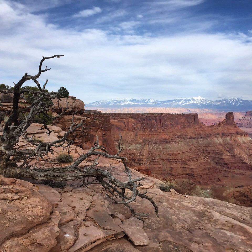 Dead Horse Point State Park<br /> Photo: Abby Barrows