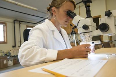 Abby Barrows_microscope
