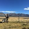Prospecting. <br /> <br /> Photo: Edwin Eversole