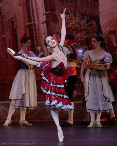 Imperial-Russian-Ballet-Act-1-Wellington-St-James-20170916-17