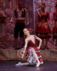 Imperial-Russian-Ballet-Act-1-Wellington-St-James-20170916-18