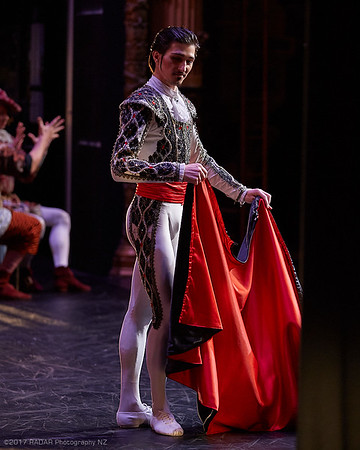 Imperial-Russian-Ballet-Act-1-Wellington-St-James-20170916-3