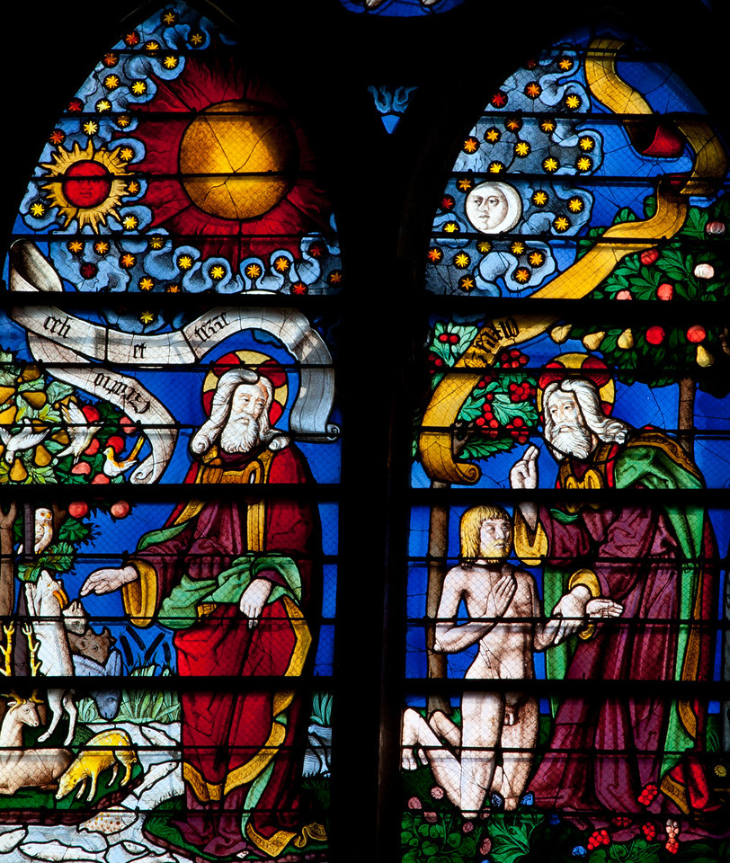 Chalons-en-Champagne Cathedral, The Birth of Adam and the Animals