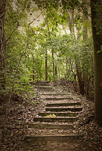 Stairways, Paths, Walkways