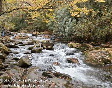 Mountain Stream #26
