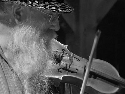 The Fiddler #5