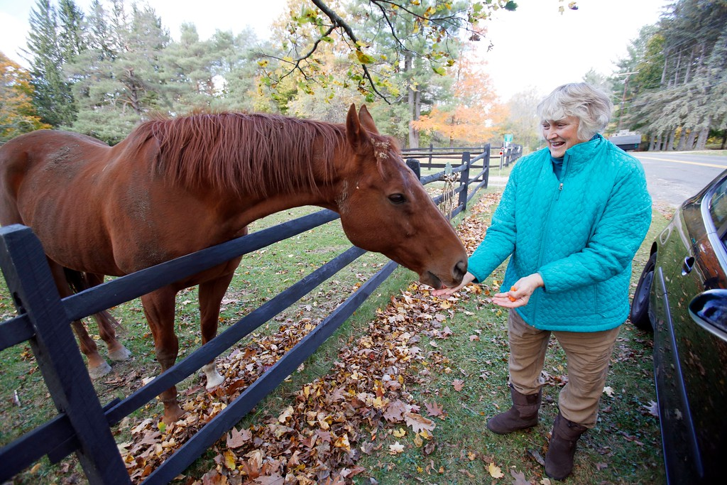 . Jacque Jones tries to bring carrots or other veggies with her every time she drives from Lee to Great Barrington via Stockbridge Road. She makes the trip with extra food to feed her favorite horse, who she calls Big Red but whose real name is Quentin Tarantino. Tuesday, October 25, 2016. Stephanie Zollshan � The Berkshire Eagle | photos.berkshireeagle.com