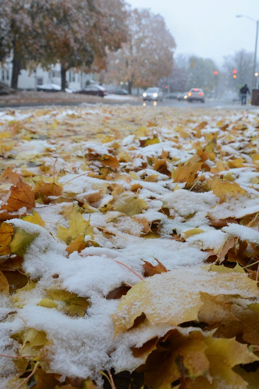 . Snow covers fallen leaves on the sidewalk along Maplewood Avenue in Pittsfield during the first significant snowfall of the season on Thursday, October 27, 2016. Gillian Jones � The Berkshire Eagle | photos.berkshireeagle.com