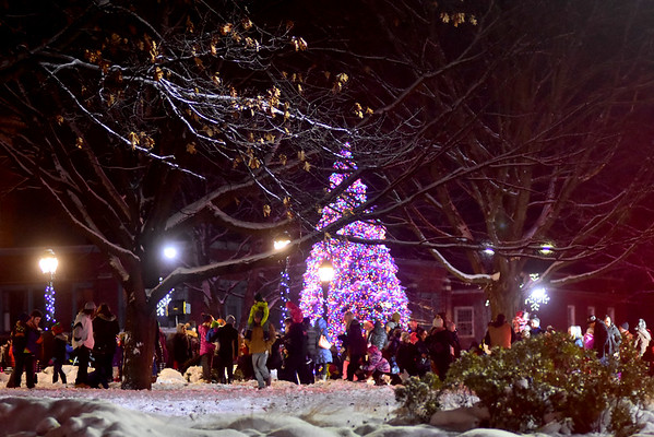 Pittsfield Tree lighting