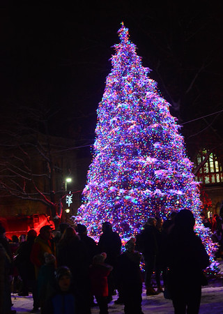 Pittsfield Tree lighting