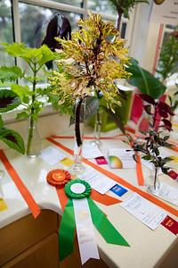 Debbie Moran Winner Horticulture Sweepstakes, Award of Merit
