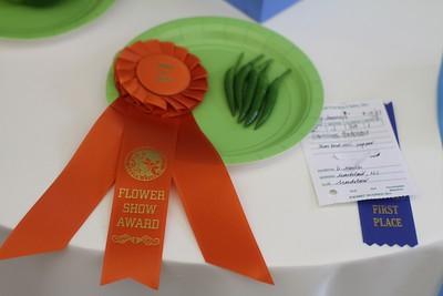 Section J Award of Merit: Debbie Moran Capsicum frutescens Thai bird chili