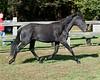 Tanzia - 20090929_2145