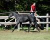 Tanzia - 20090929_2262