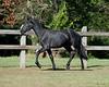 Tanzia - 20090929_2253