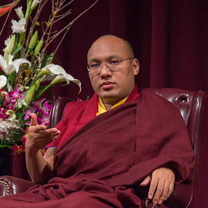 20150317-CCARE-17th-Karmapa-7207