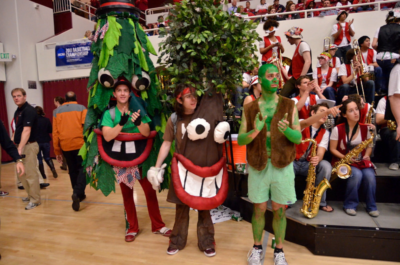 """On """"Sprout Night"""" the new tree was inaugurated"""