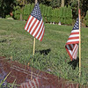Flags at Camano Cemetery