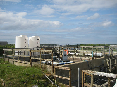 Wastewater and sewage processing