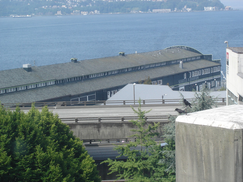 Seattle Aquarium, as viewed from Pike Market