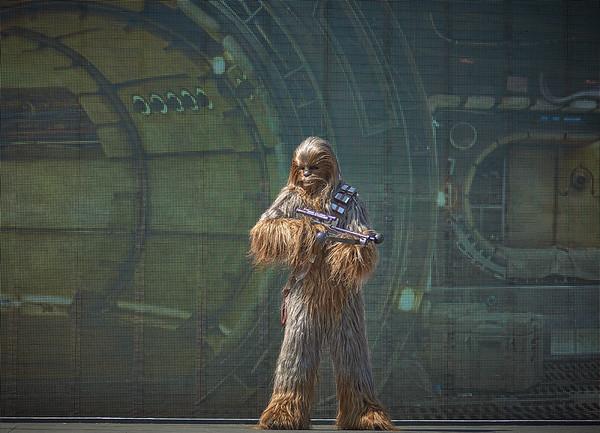 Chewbacca's Millennium Falcon