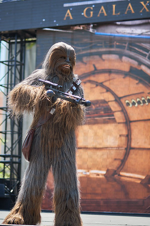 Chewbacca, Larger Than Life