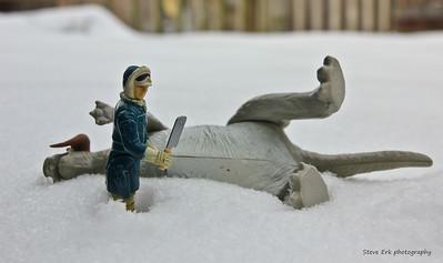 Han Solo & his tauntaun