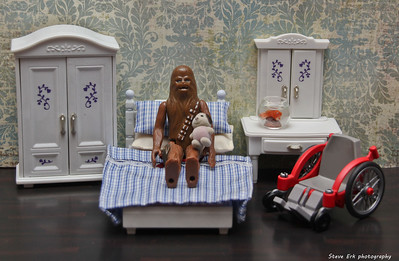 Chewie's bedroom