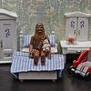 Chewie's bedroom