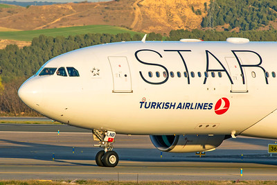 Turkish Airlines Airbus A330-223 TC-LNB 3-12-19 2
