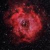 Rosette Nebula (with NGC 2244)