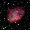 "Date Taken: 11/13/2010  <br /> Equipment: 12.5"" PlaneWave Telescope with SBIG ST 10XME camera;  <br /> Exposures: Ha-24 min, RGB-28 min each, Lum-68 min.  Processing: MaximDL and Photoshop<br /> <br /> The Crab Nebula (catalogue designations M1, NGC 1952, Taurus A) is a supernova remnant and pulsar wind nebula in the constellation of Taurus.  Located at a distance of about 6,500 light-years from Earth, the nebula has a diameter of 11 ly and expands at a rate of about 1,500 kilometers per second.  The nebula is referred to as Messier 1 or M1, being the first Messier Object catalogued in 1758.  This is one of the most interesting and studied nebula in the sky.<br /> <br /> At the center of the nebula lies the Crab Pulsar, a neutron star (or spinning ball of neutrons), 28–30 km across,[5] which emits pulses of radiation from gamma rays to radio waves with a spin rate of 30.2 times per second. The nebula was the first astronomical object identified with a historical supernova explosion.<br /> <br /> The nebula acts as a source of radiation for studying celestial bodies that occult it. In the 1950s and 1960s, the Sun's corona was mapped from observations of the Crab's radio waves passing through it, and in 2003, the thickness of the atmosphere of Saturn's moon Titan was measured as it blocked out X-rays from the nebula."