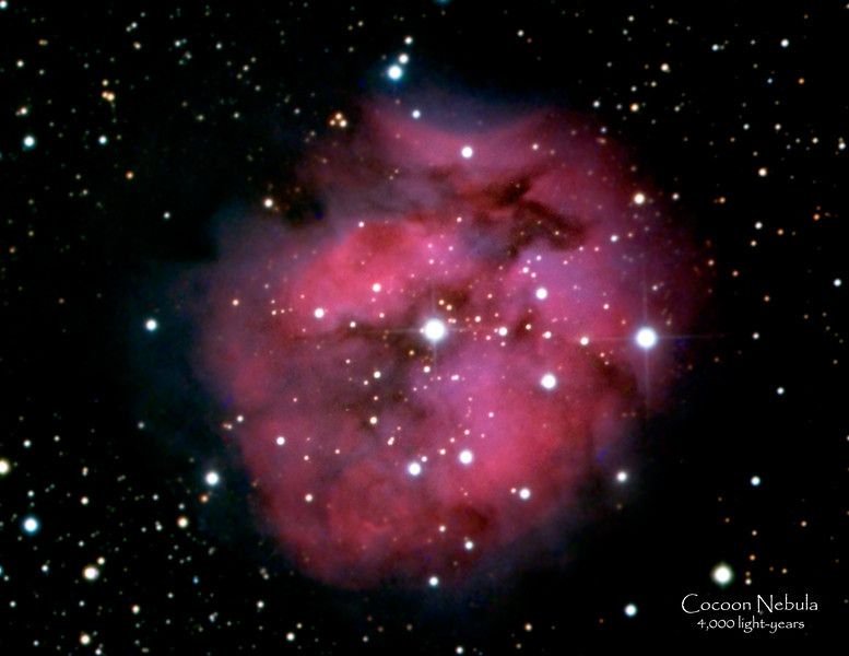 "Date Taken: 11/13/2010  <br /> Equipment: 12.5"" PlaneWave Telescope with SBIG 10XME camera;  <br /> Exposures: HaRGB-28 min each, Lum-52 min.  Processing: MaximDL and Photoshop<br /> <br /> Cocoon Nebula (or IC 5146 or Caldwell 19) - 4,000 light years away and about 15 ly across.  Its center star was formed around 100,000 years ago.  It is a reflection/emission nebula in Cynus."