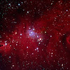 "Date Taken: 1/9/2010  <br /> Equipment: 5"" Televue Telescope with SBIG ST 10XME camera;  <br /> Exposures: RGB-20 min each, Ha-48 min.  Lum-40 min.  Processing: MaximDL and Photoshop<br /> <br /> Christmas Tree Nebula (most of picture) including the Cone Nebula (far left side) - Also known as NGC 2264, they are approximately 2,600 light years away in the Monoceros Constellation."