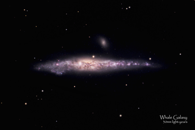 NGC 4631 or the Whale Galaxy