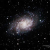 Triangulum Galaxy or M 33