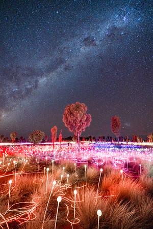 Field of Light I
