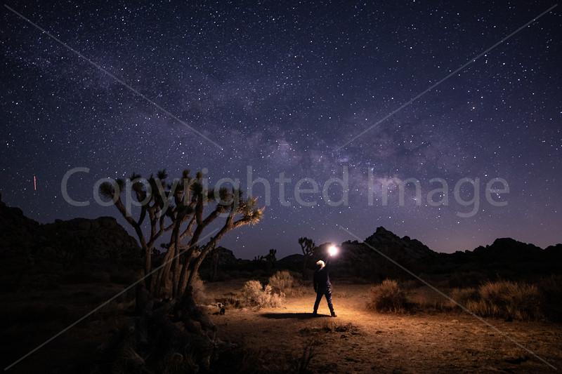 May's Milky Way