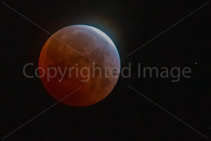 Super Flower Blood Moon Eclipse